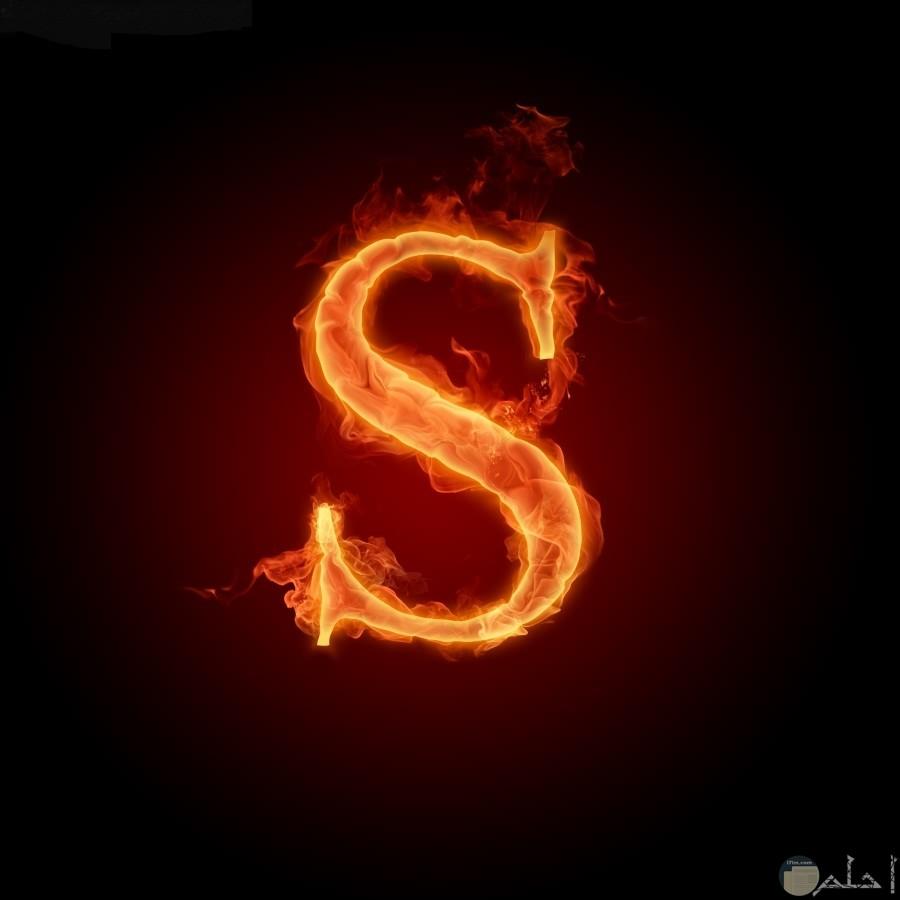 حرف s و نوره.