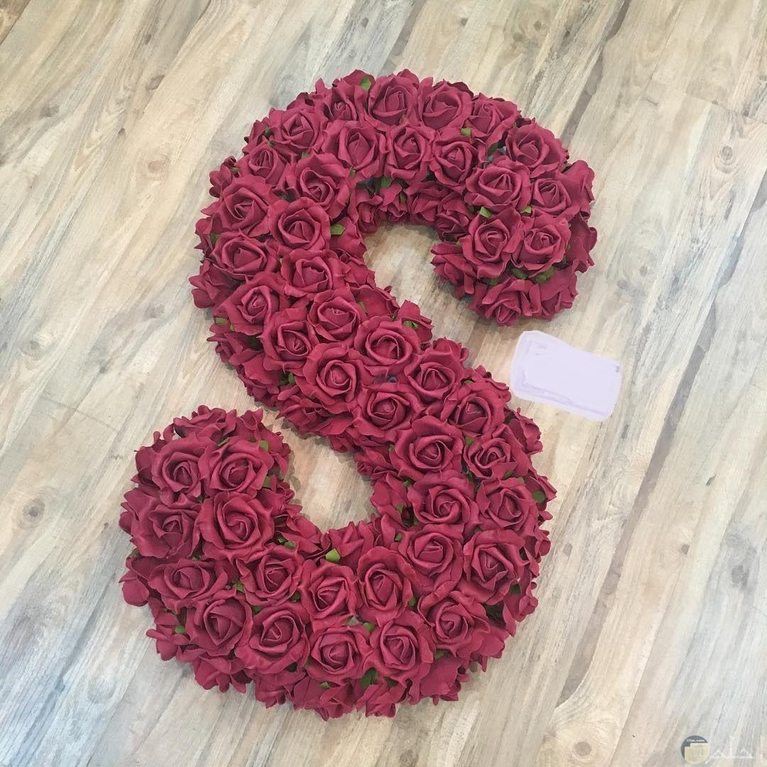 الورد يزين حرفs.