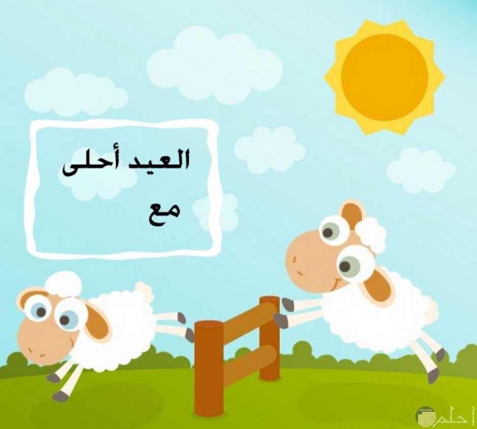 صورة لخروف العيد و مكتوب فيها العيد أحلى مع ...