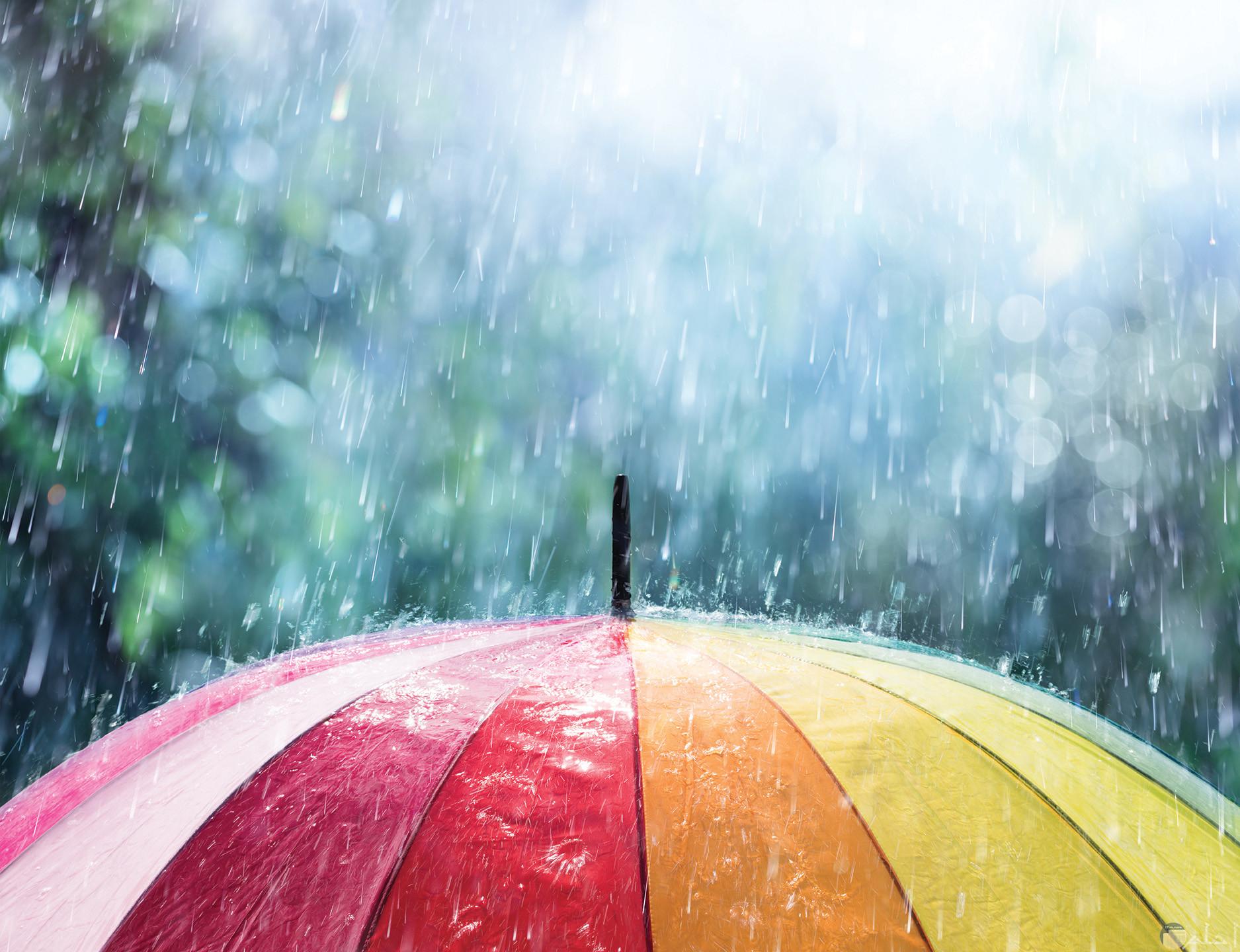 سقوط المطر على المظلة الملونة.