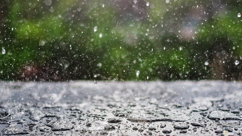 المطر و الشتاء.