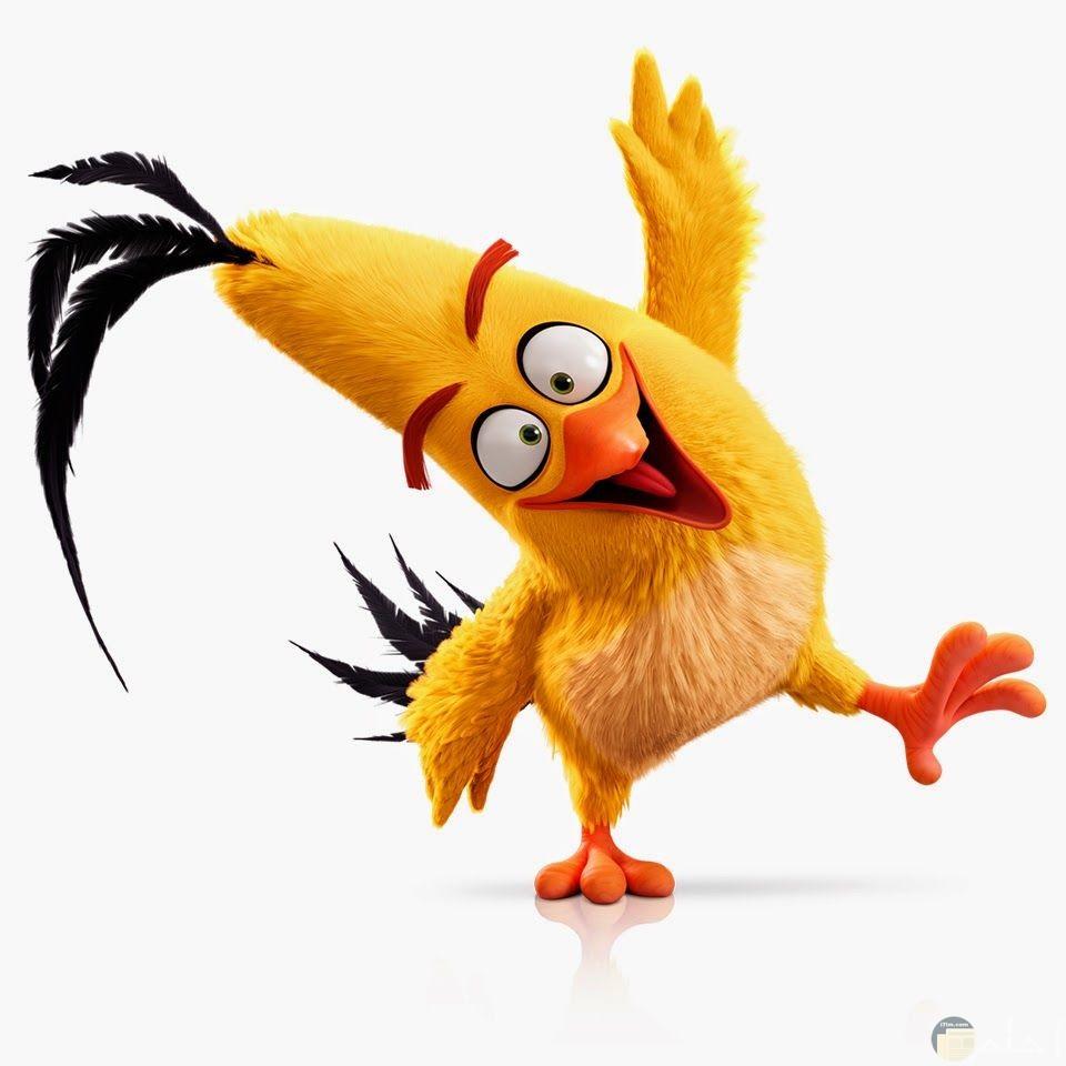 رسمة طائر أصفر.