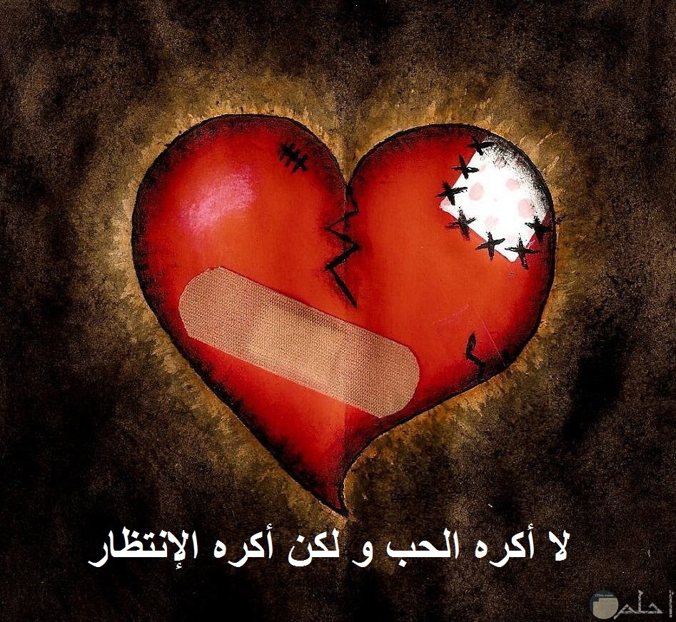لا أكره الحب و لكن أكره الإنتظار.