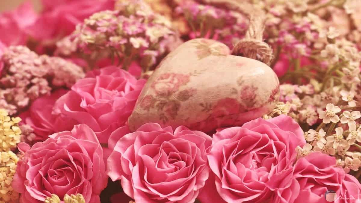 الروز رمز الحب الهادئ