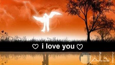 ملائكة الحب...