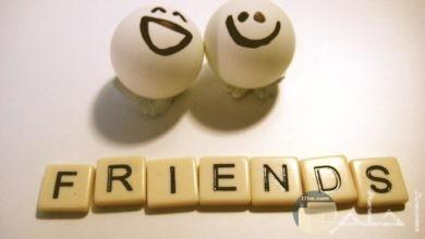 الصداقة و الحرية.