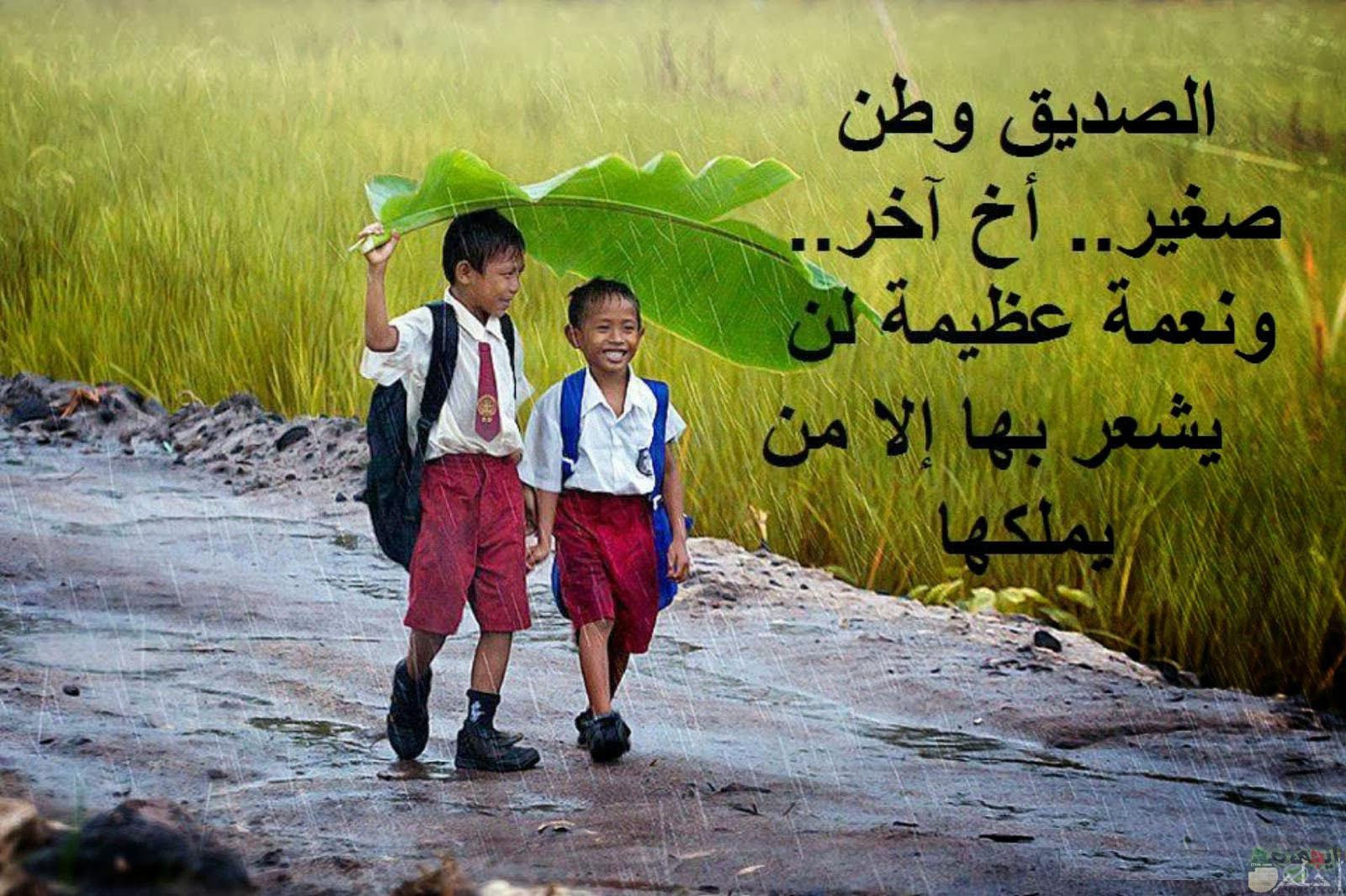 صداقة الحياة.