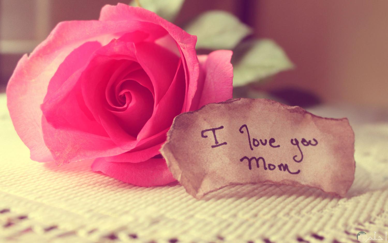 الام هى الحب.