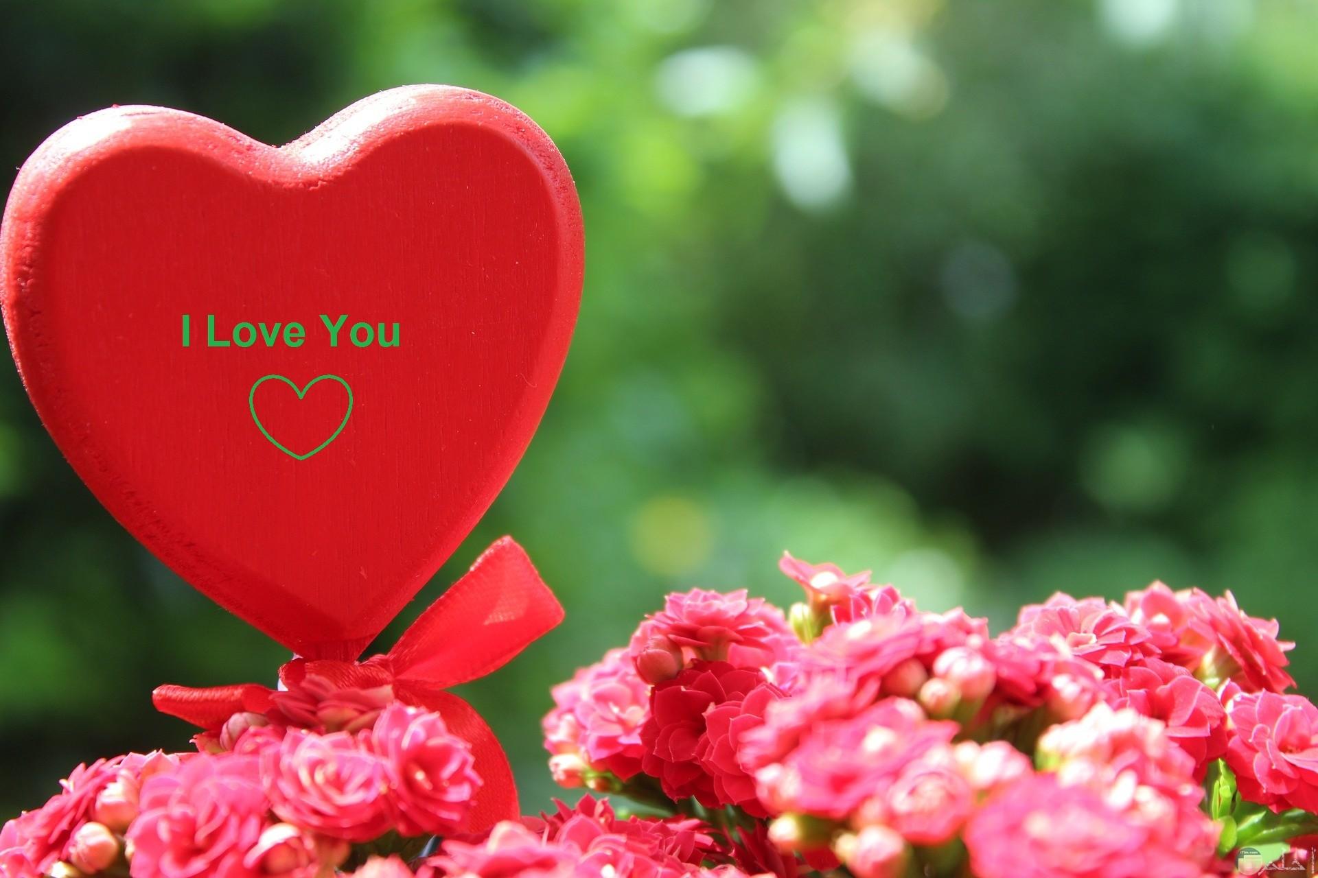 قلب مع الورد البينك.