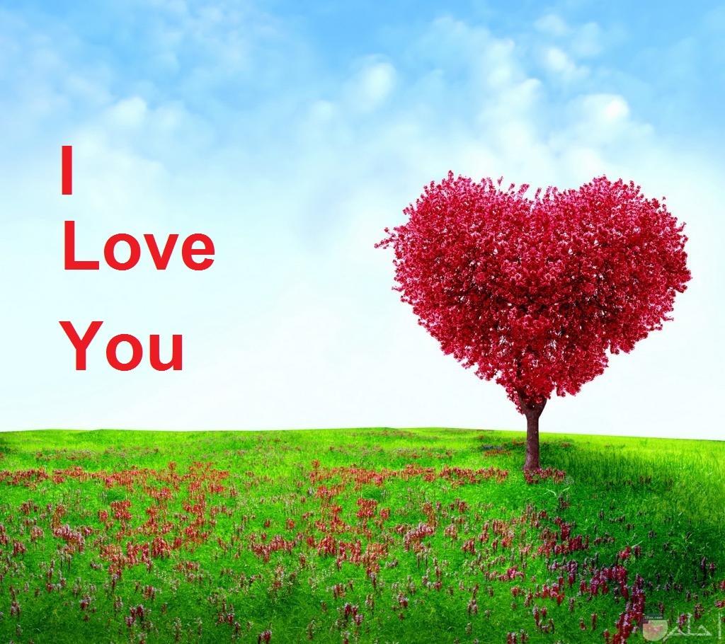 قلب أحمر جميل مكتوب بجانبه بحبك...