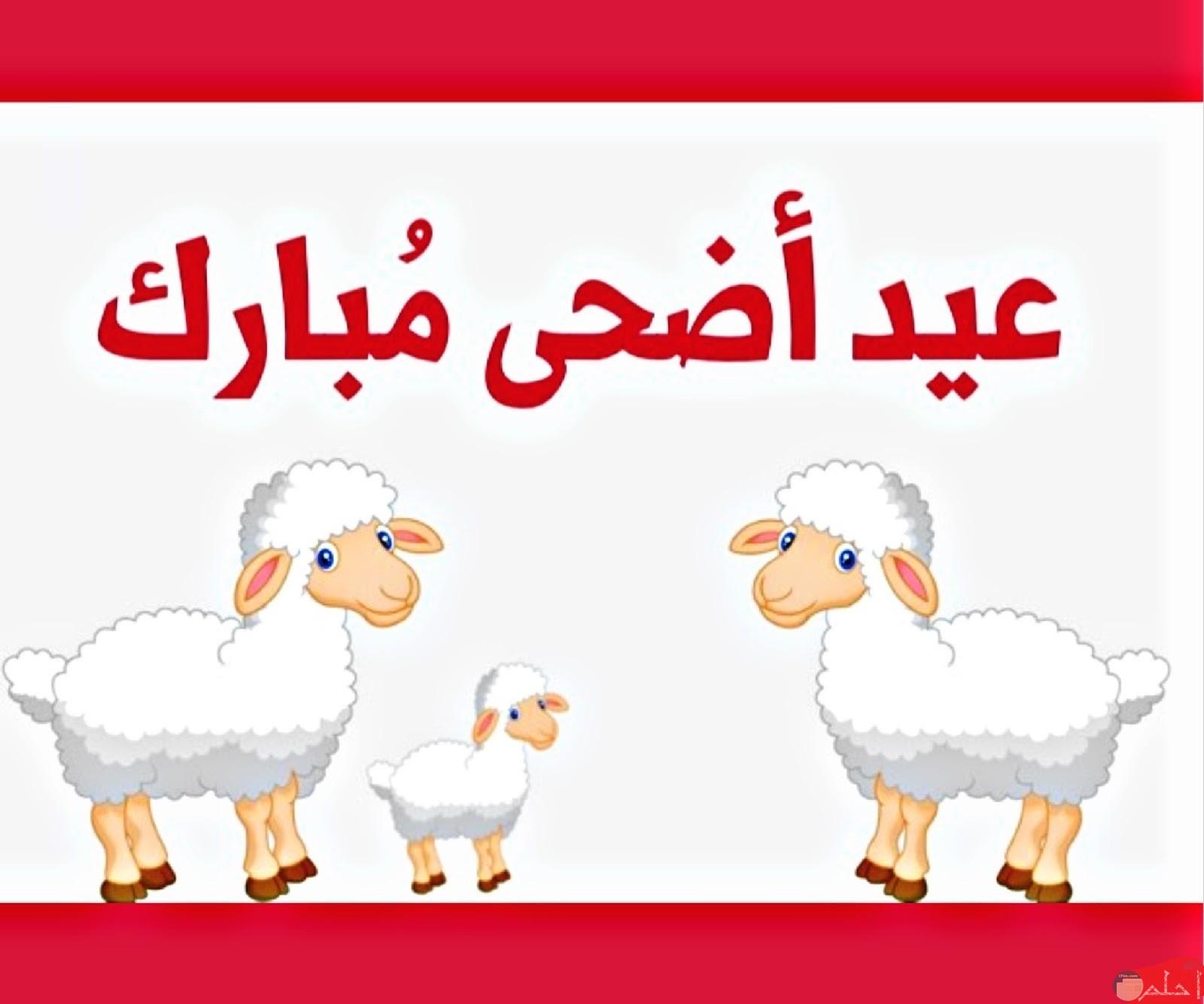 عيد الأضحى المبارك.