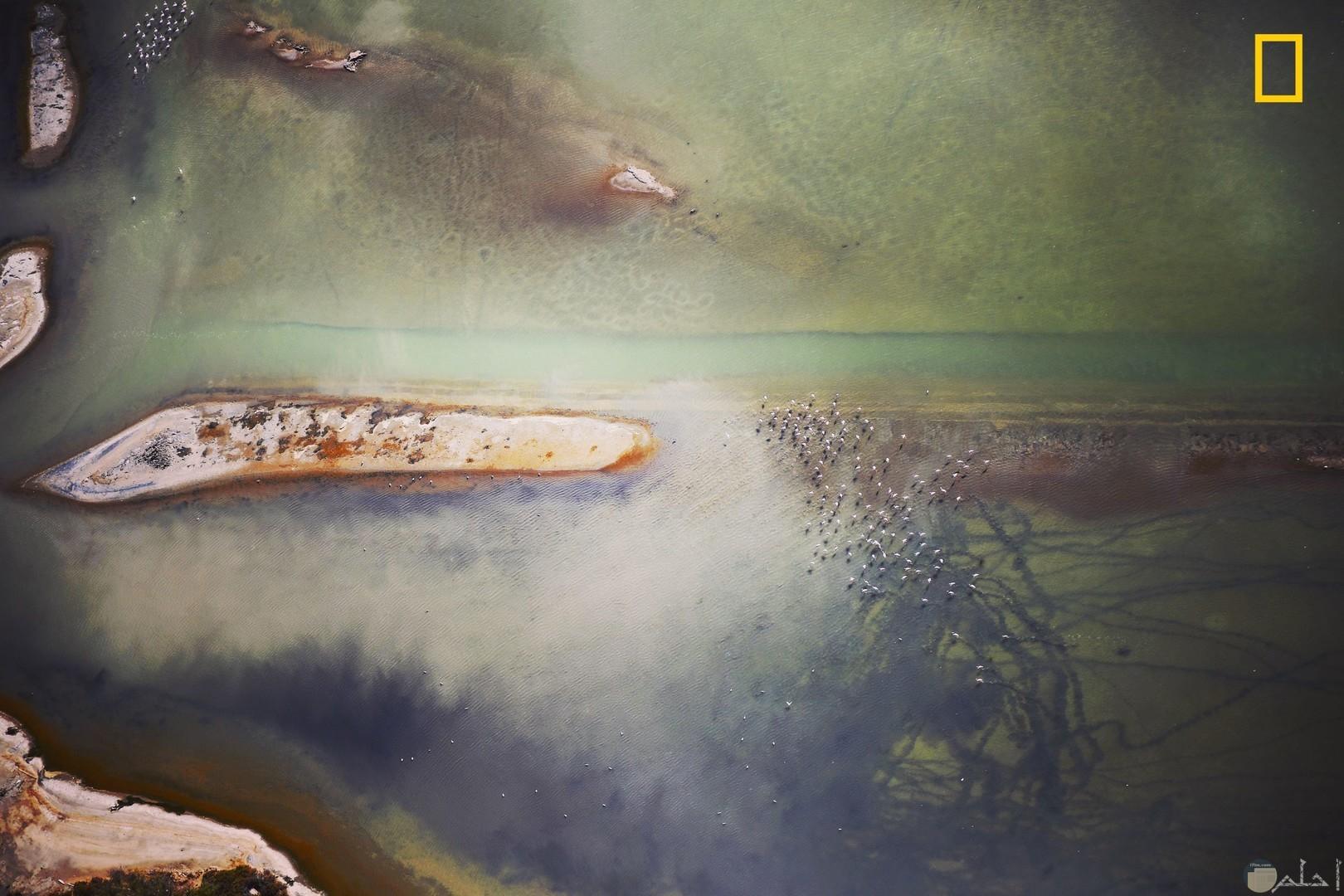 صورة من أرتفاع شاهق لمجرى الماء والخضرة.