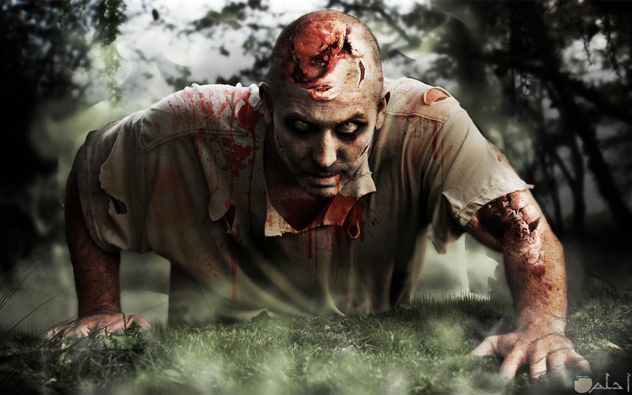 زومبي زاحف من أحد مشاهد أفلام الرعب.