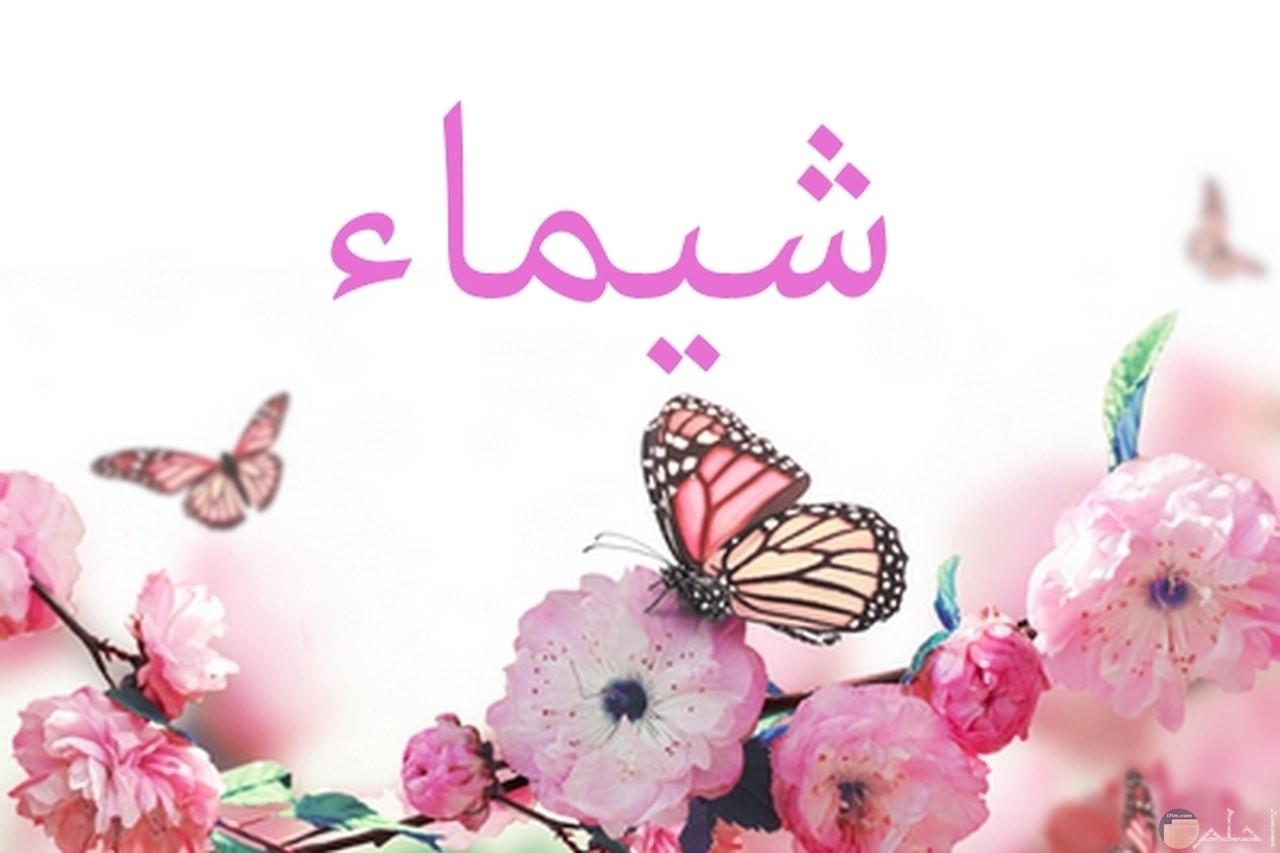 إسم شيماء مزخرف بالورد و الفراشات.