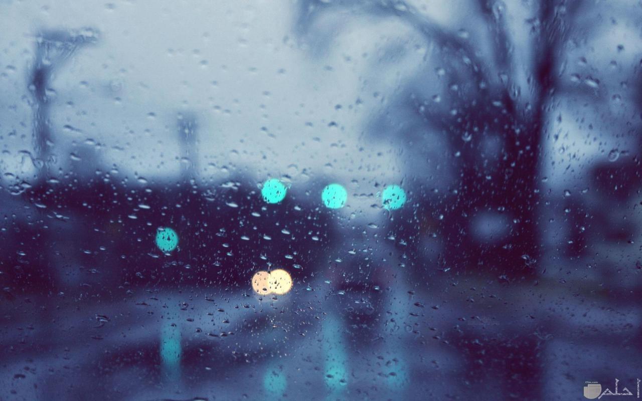 المطر و الضباب.