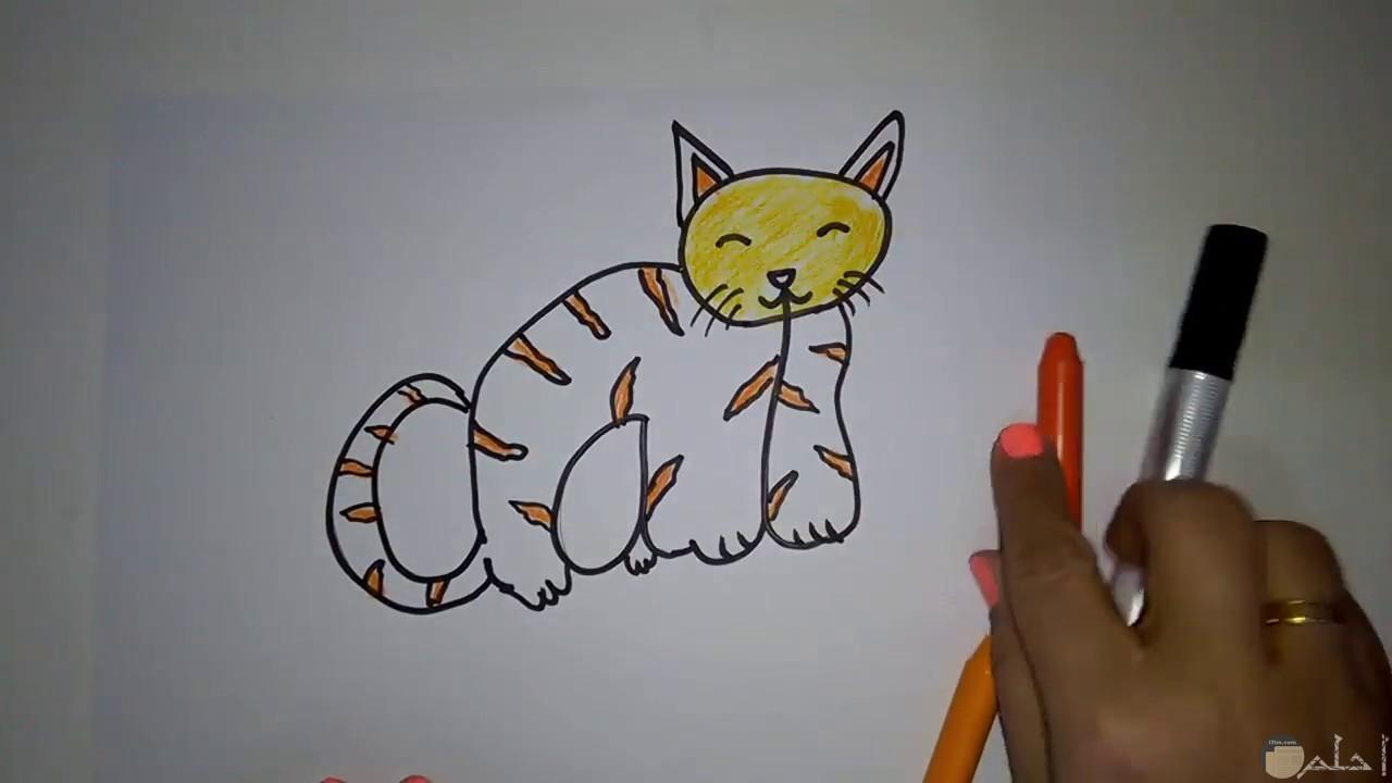 قطة للرسم للاطفال