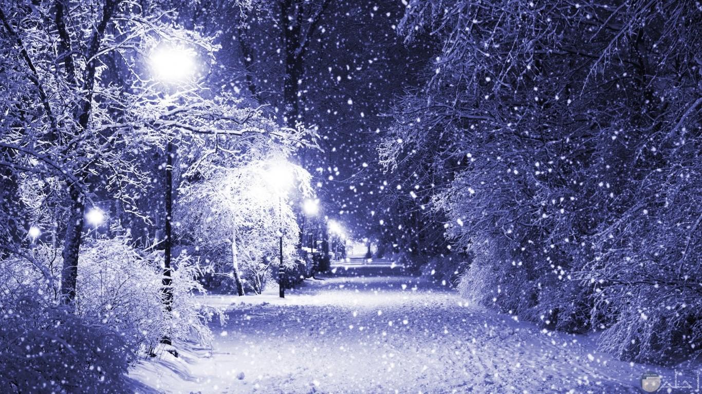 ثلج الشتاء الأبيض.