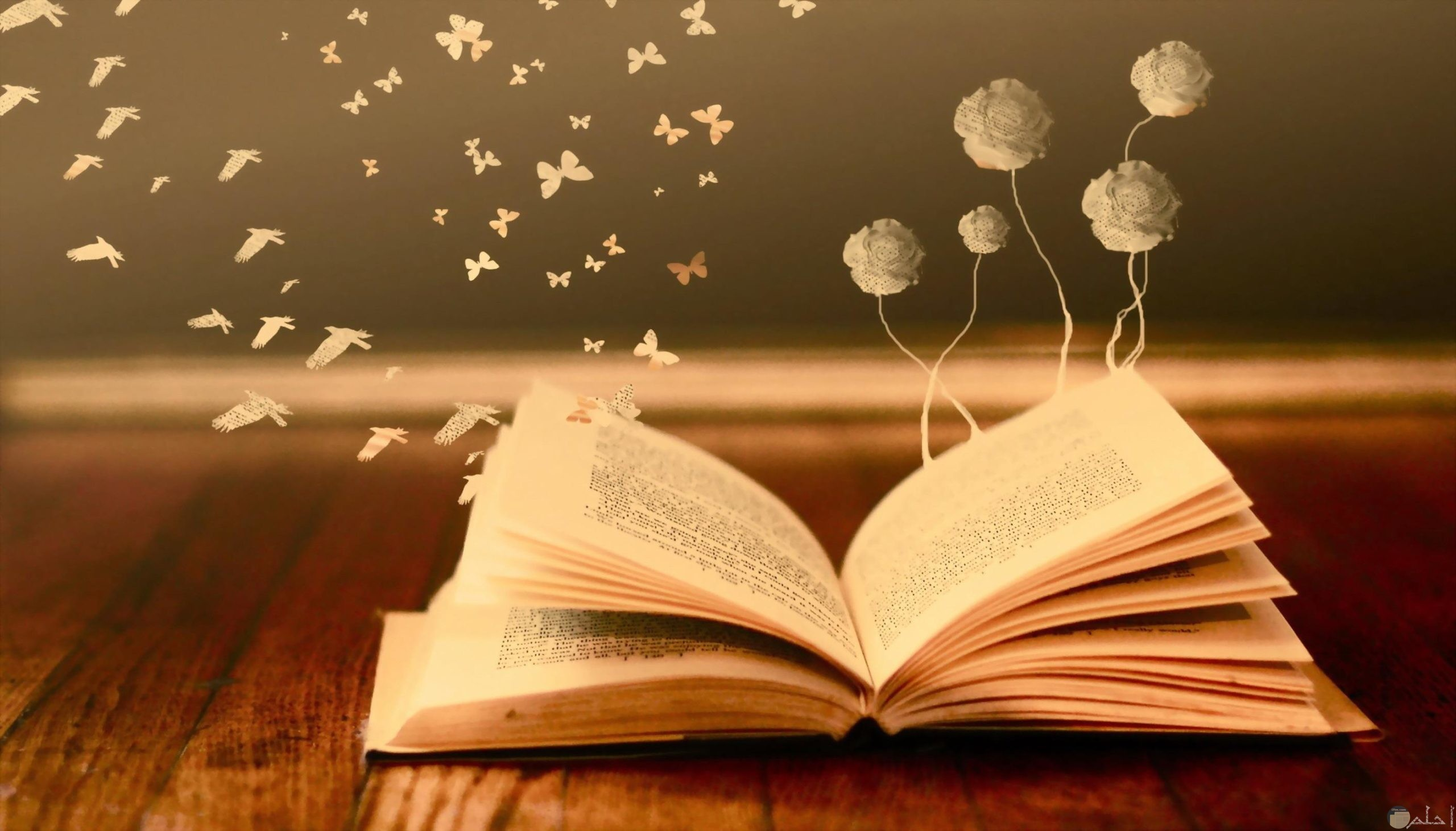 كتاب الحب الغالى.