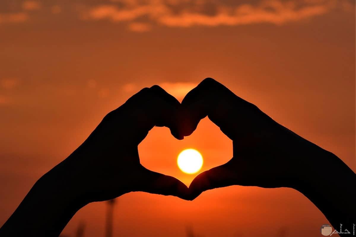 الحب شطرين و قلبين بجسدين.