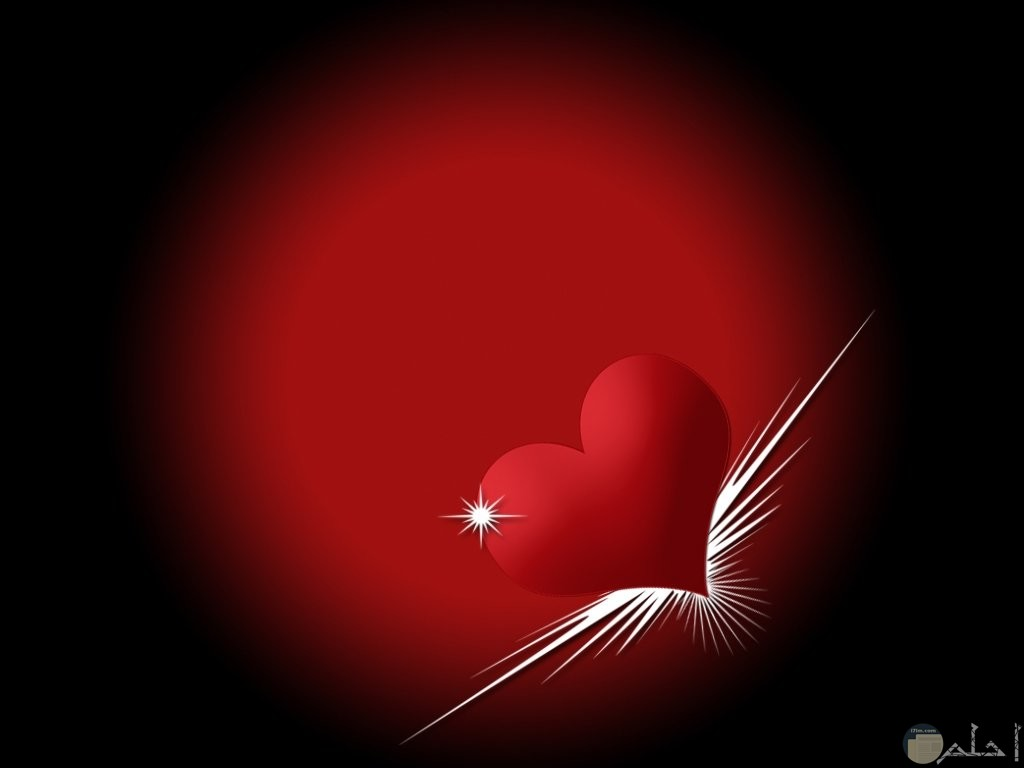 القلب الطائر عشقاً.