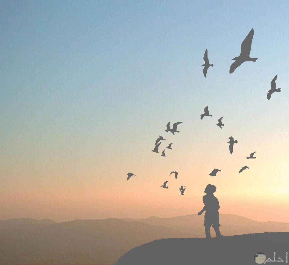 الحرية أجمل حياة.
