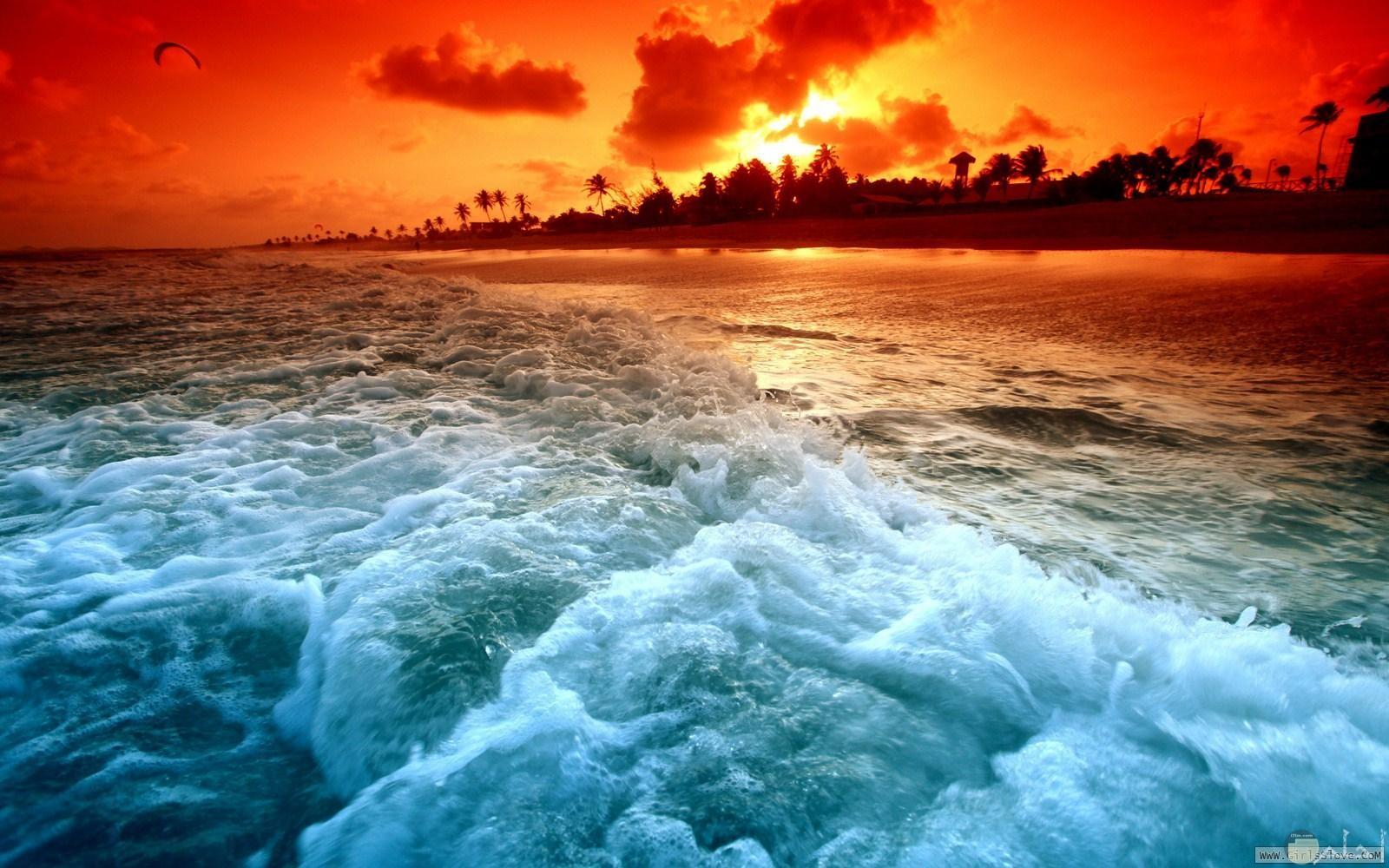 بحر وغروب للشمس ونخيل منظر خلاب للواتس