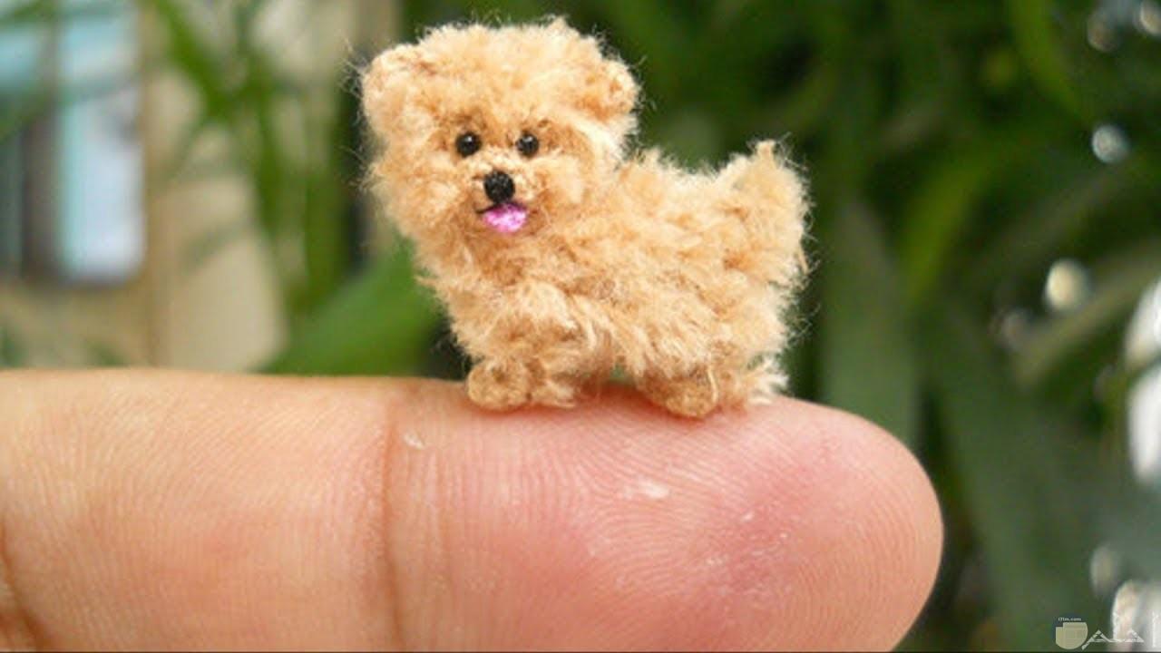 كلب صغير دمية.