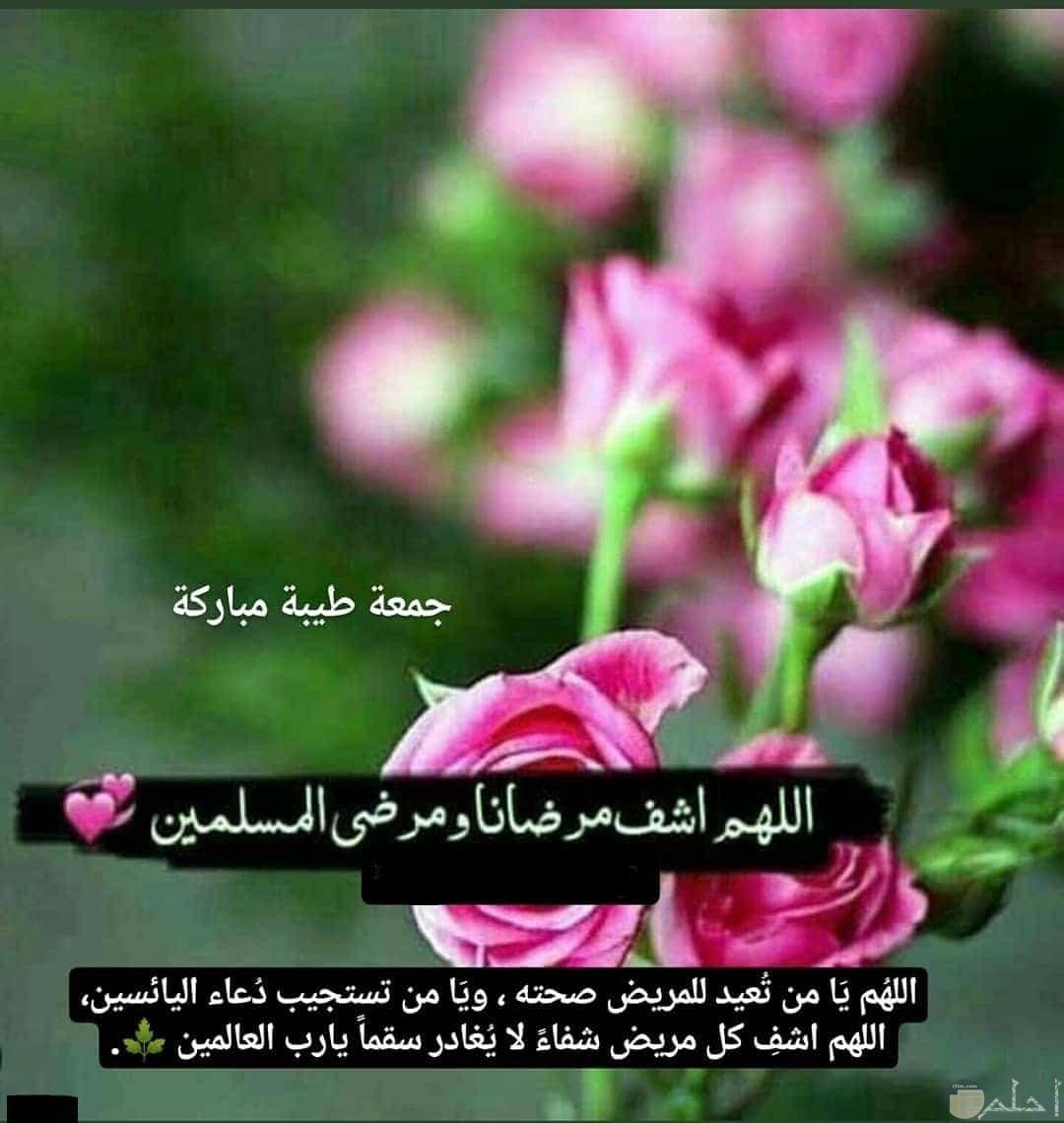 جمعة طيبة مباركة _ دعاء لشفاء المرضى و المسلمين.