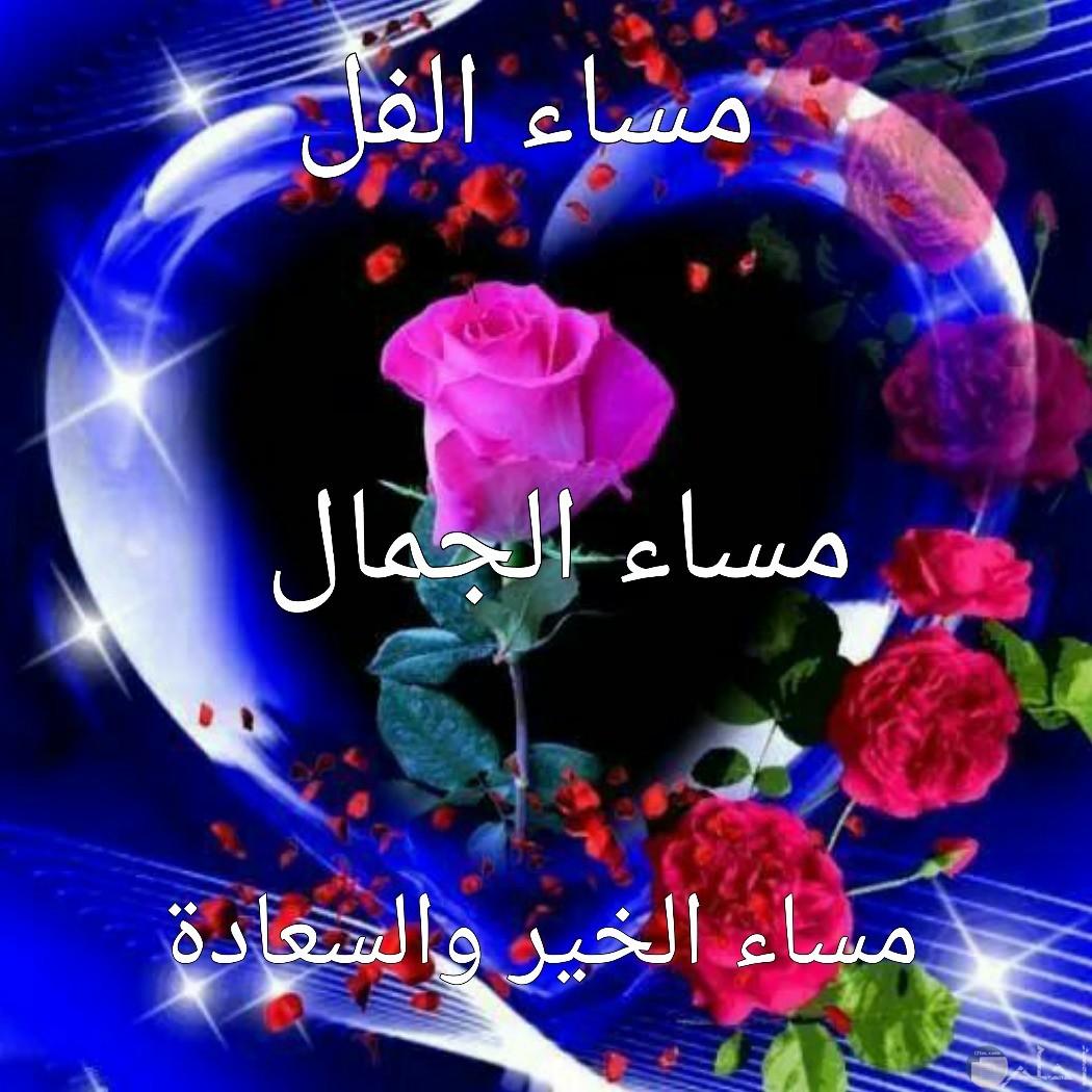 صورة مسائية تحمل الخير و الورد.