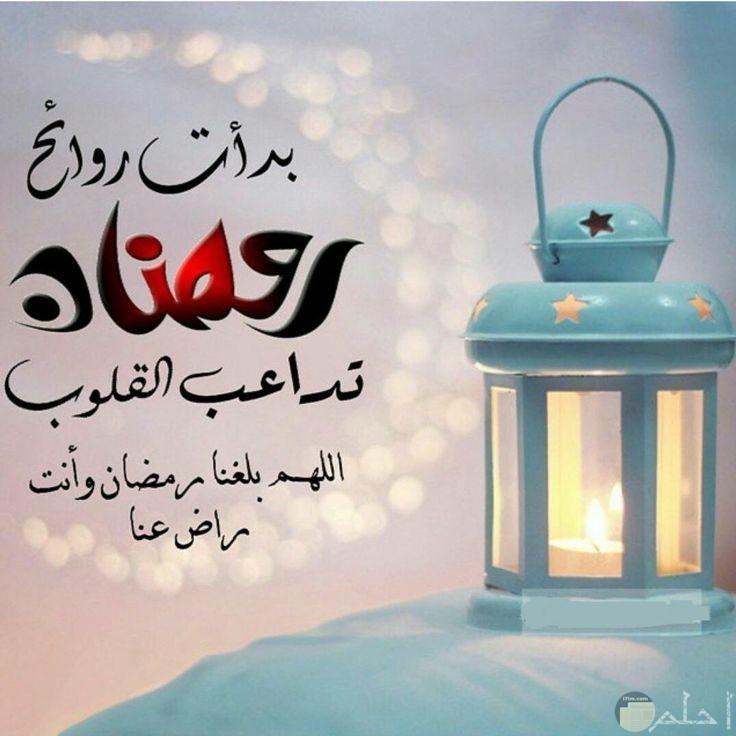 بدأت روائح رمضان تداعب القلوب اللهم بلغنا رمضان وانت راضي عنا