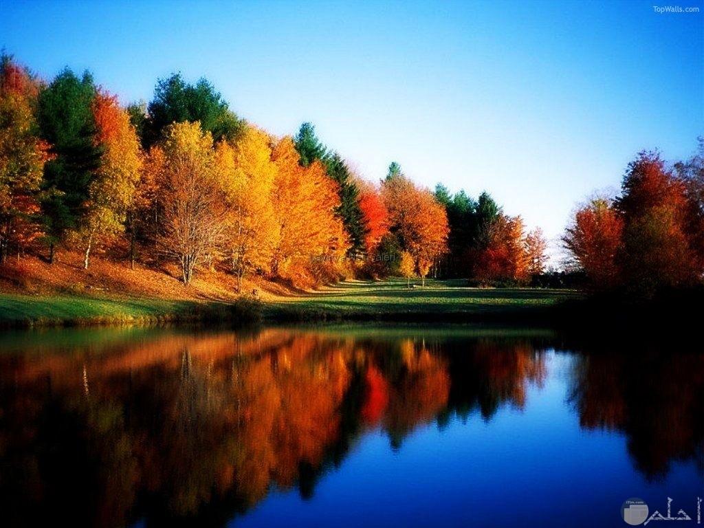 اشجار لونها احمر واصفر وبني ومياه صافية