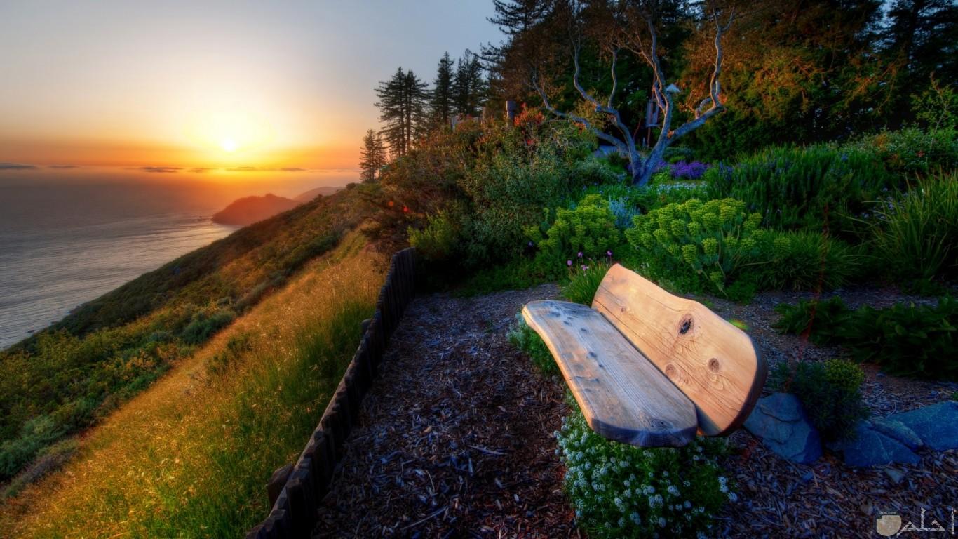مقغعد خشب امام البحر منظر رائع