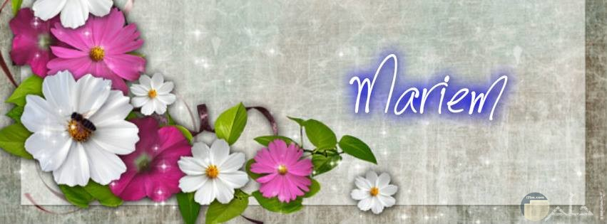 خلفية باسم مريم
