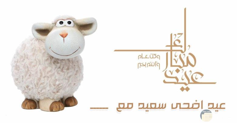 اجمل الصور عن عيد الاضحى المبارك