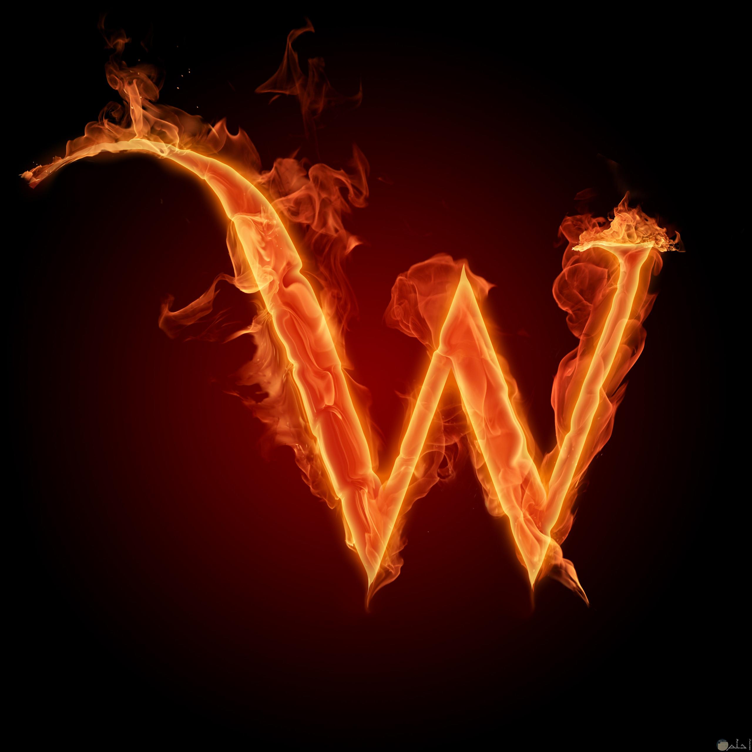 حرف w بخط من نار.