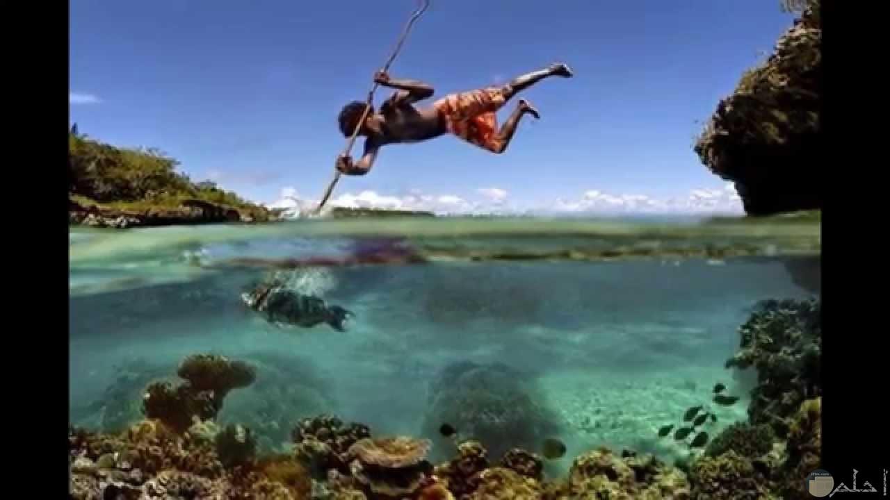 صورة جميلة للحظة صيد السمك.