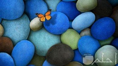 احجار ملونة و فراشة جميلة.