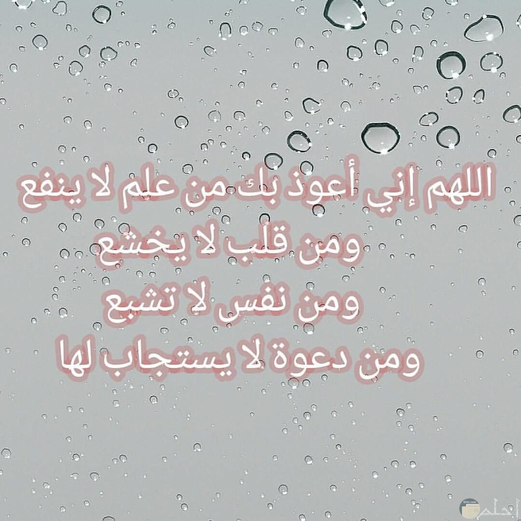 اللهم إني أعوذ بك من علم لا ينفع و ...