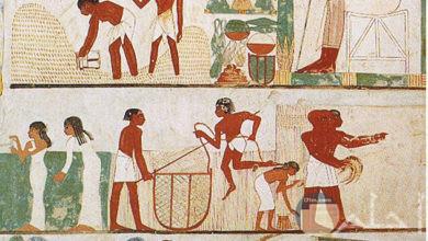 رسومات فرعونية للزراعة و حيات الفلاح المصري القديم.