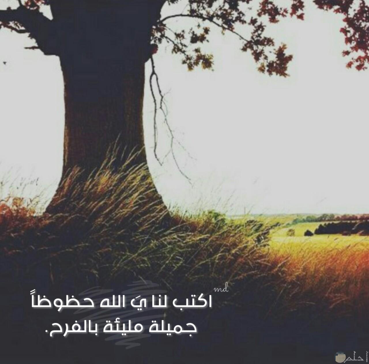 يارب اكتب لنا الفرح
