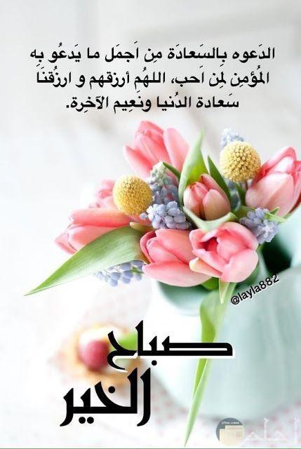 صباح السعادة لكل من احب