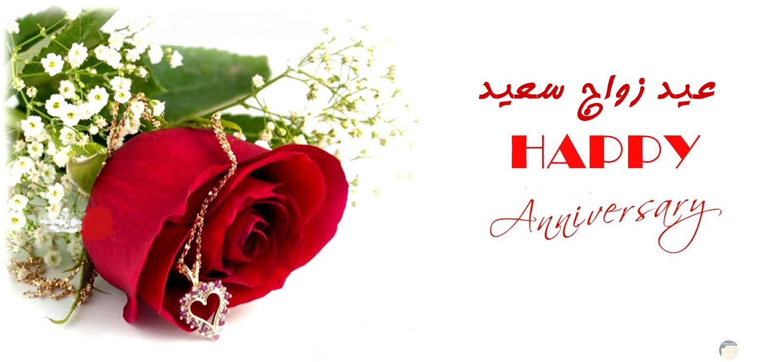 صورة لعيد الزواج باللغة العربية و الانجليزية.