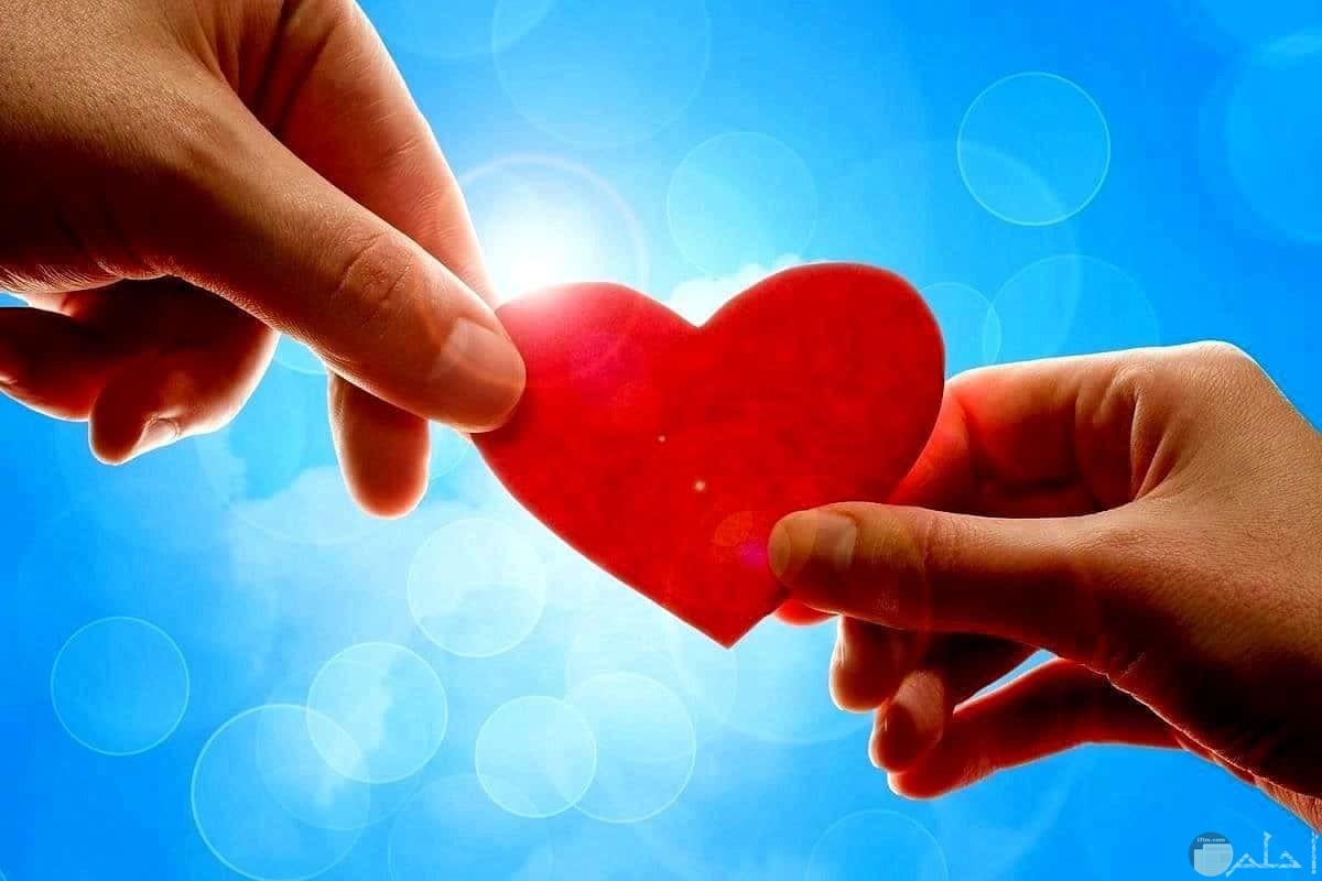 صورة بمعنى الحب أخذ و عطاء.