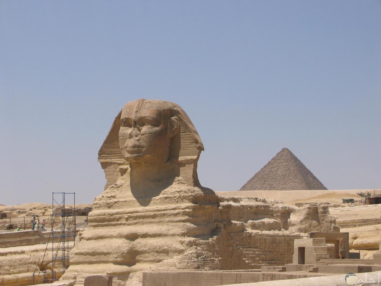 تمثال ابو الهول فى مصر.