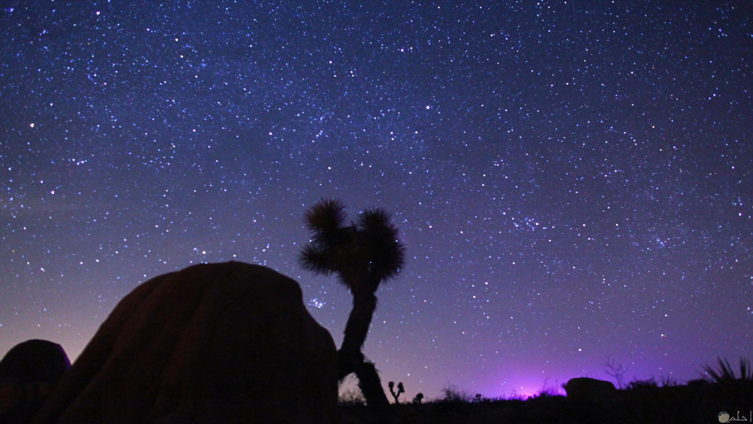 من اجمل الصور للسماء والنجوم