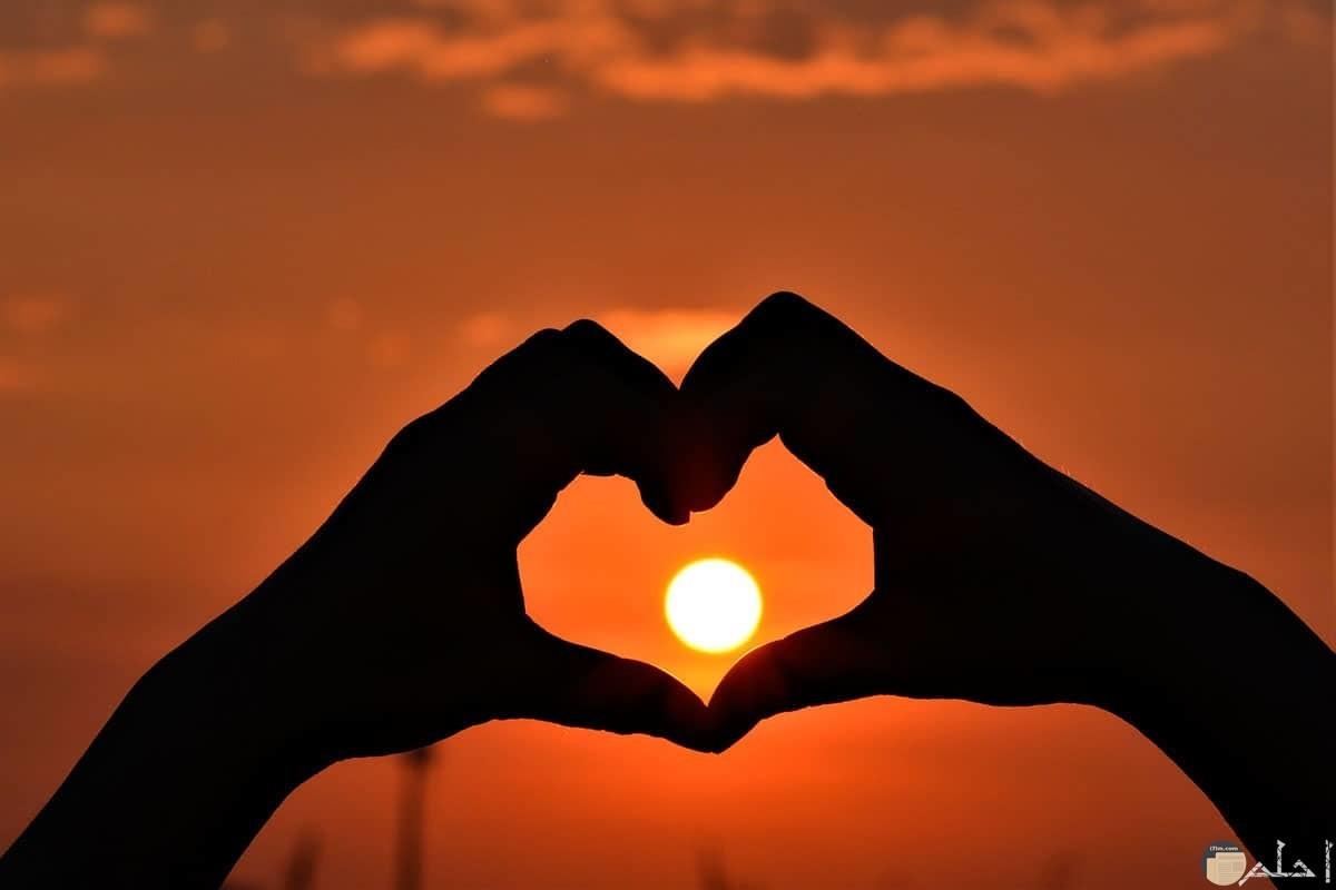 صورة تجمع يدين و الشمس تتوسطهما.