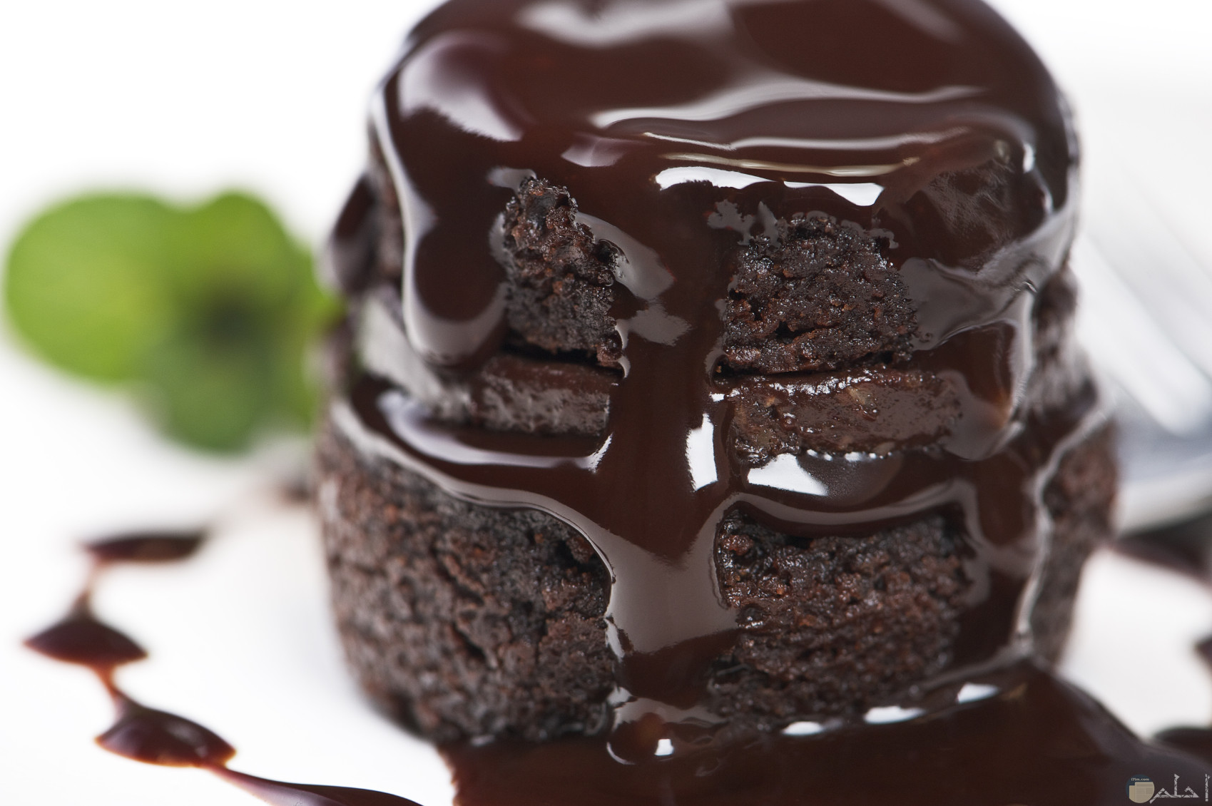 قطعة شوكولاته محشوة و مغطاه بالشكولاته السائلة.