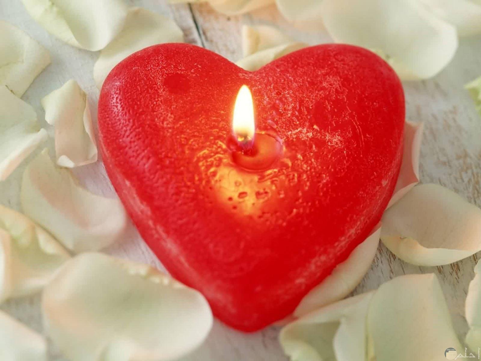 شمعه على هيئه قلب احمر مضيئة