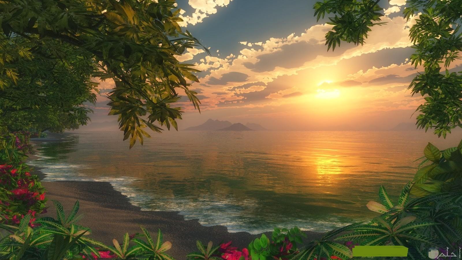 صورة للحظة بزوغ الشروق الشمسى.