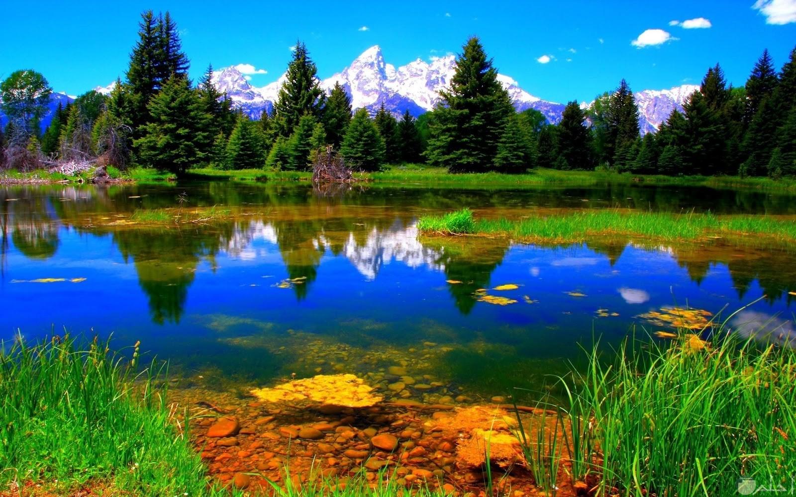 من اجمل الصور الطبيعية